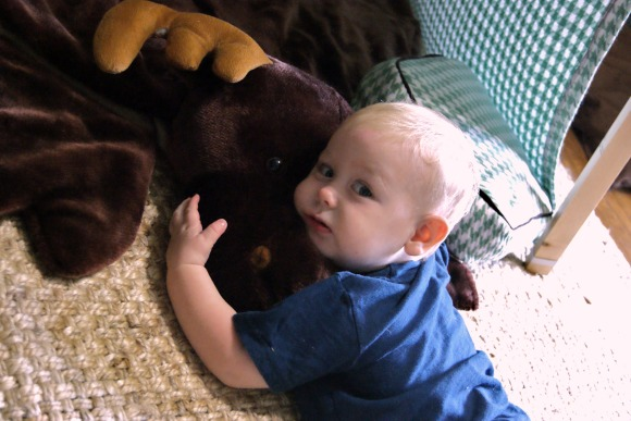 landon loving moose